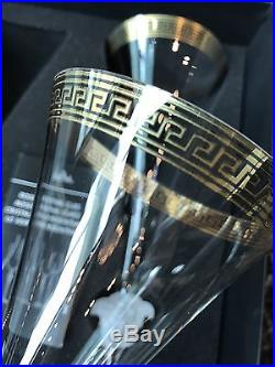 Versace Rosenthal D'Or Champagne Flute, set of 2